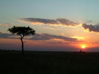 Maasai Mara-Kenya