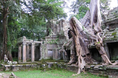 Angkor's temple-Siam Reap, Cambodia