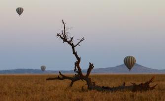 Balloons at dawn in Serengeti