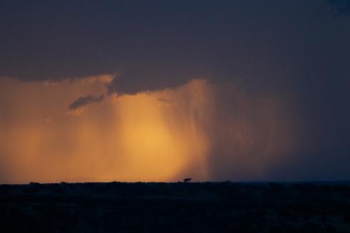 Raining in Serengeti