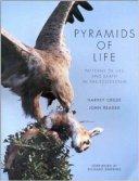 pyramids of life