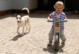 Simón en bicicleta con Nala
