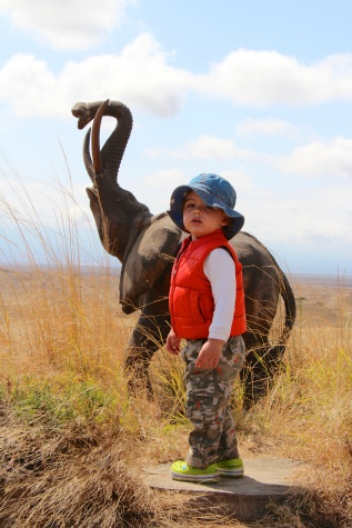 Domando elefantes en Maasai Land