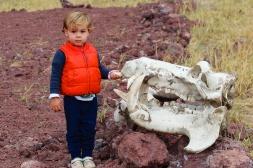 Simón con calavera de rinoceronte-Lake Manyara